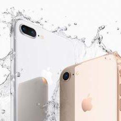 Открыт предзаказ на новые iPhone
