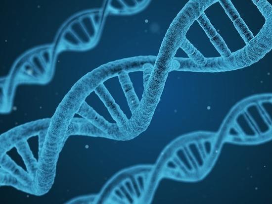 Гены решают: стоит ли воспитывать детей, если все заложено заранее