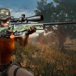 Разработчики PlayerUnknown's Battlegrounds отложили работу над обновлением