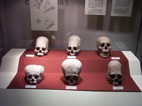 Разгадан секрет вытянутых черепов, обнаруженных в Баварии
