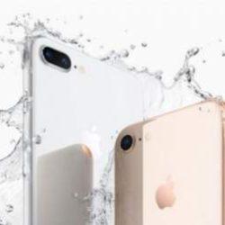 iPhone 8 оказался популярнее iPhone X