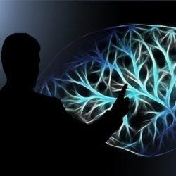 Нейрофизиологи раскрыли секрет финансового успеха