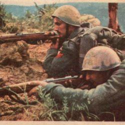 Русский белогвардеец под Сталинградом