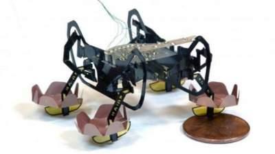 """Робот-""""насекомое"""" научился двигаться под водой"""