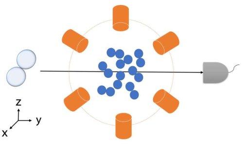 Ученые начали получать подтверждения участия явления квантовой запутанности в химических реакциях