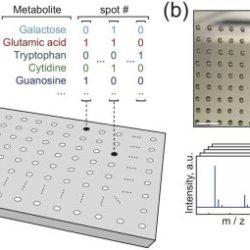 """Создан первый опытный образец """"молекулярного жесткого диска"""", способного хранить большие объемы информации"""