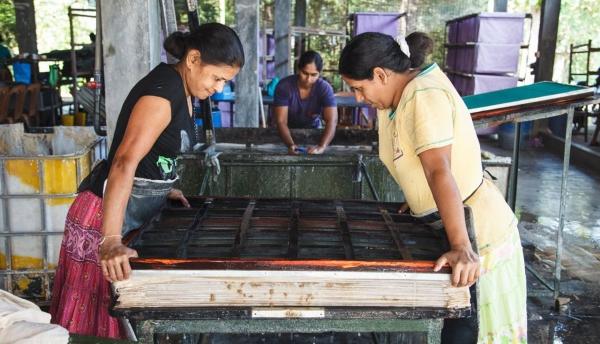 Как жители Шри-Ланки превращают слоновьи экскременты в причудливую бумагу