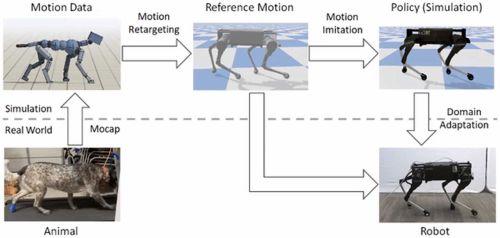Специалисты компании Google научили робота-собаку двигаться подобно настоящей собаке