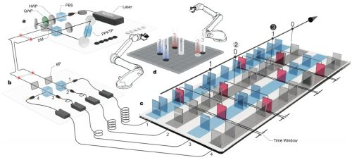Ученые сыграли в квантовый вариант игры Го при помощи запутанных фотонов