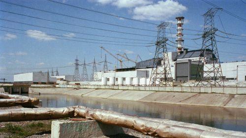Грибок, выросший в экстремальных условиях аварийного Чернобыльского реактора, может защитить астронавтов от смертельной космической радиации