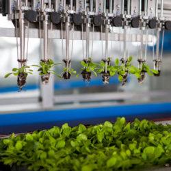 Цифровые фермы. Технологии, которые нас кормят